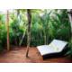 Jungle Suite terrace