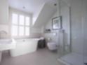 Superior Seaview Room bathroom