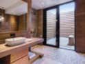 Earth Suite bathroom