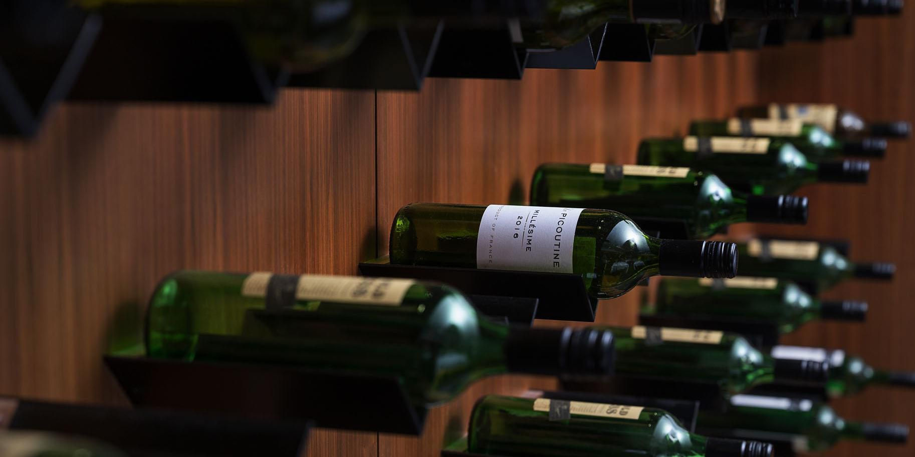 Cilantro wine cellar